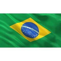 Brazília zászló