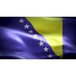Bosznia-Hercegovina zászló